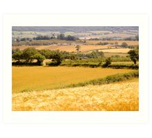 East Devon Rural ... 51 Art Print