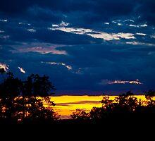 Twilight Curse by Drew Caron