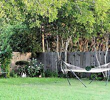 My Backyard by aprilann
