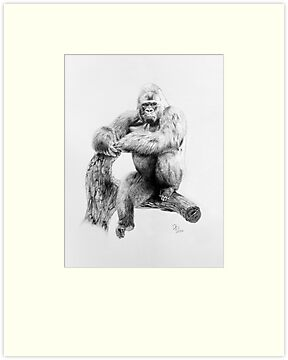 Gorilla, 2012, Pencil by Daniel Brown