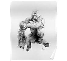 Gorilla, 2012, Pencil Poster