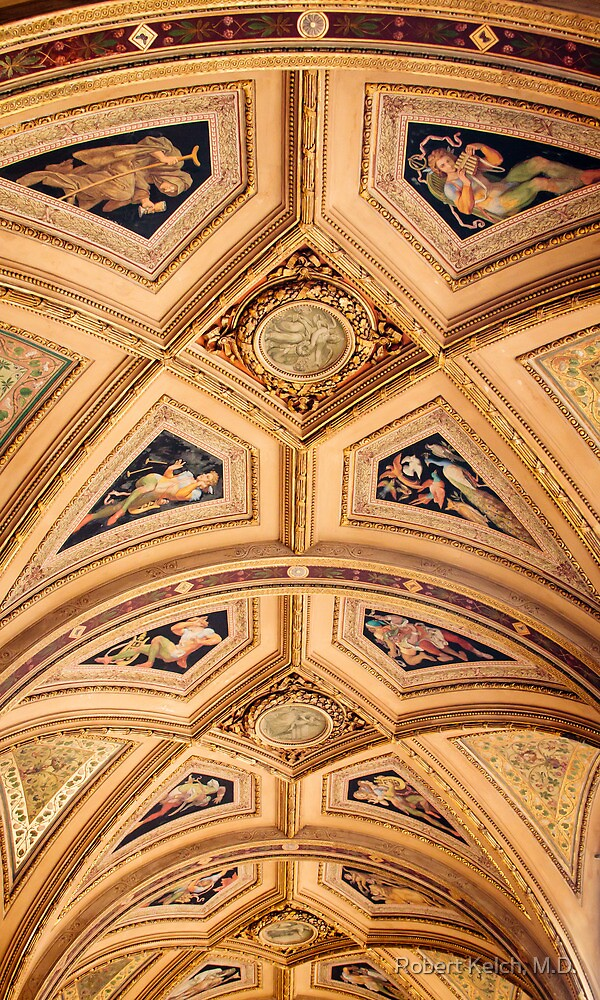 Portico Ceiling - Vienna Opera House by Robert Kelch, M.D.
