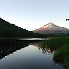 Mt. Hood Sunset Reflection by Payne24
