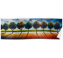 Trees in a row. Poster