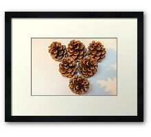 Pinecone Brown Framed Print