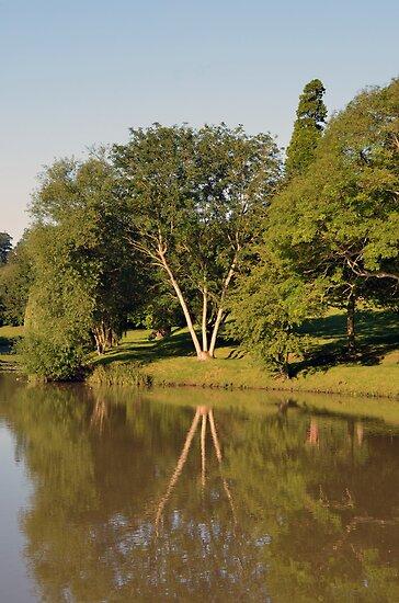 River Dene, Warwickshire by Chris Monks