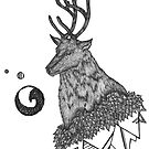 Stag by samclaire