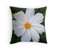 Soft White... Throw Pillow