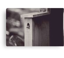bird blue black and white  Canvas Print
