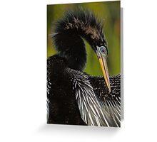 Avian Elegance Greeting Card