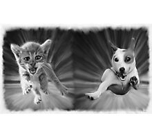 Cat and Dog Oil Painting Photographic Print
