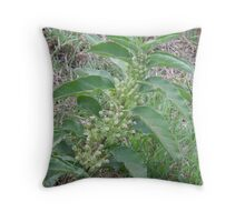 Milkweed Stalk Throw Pillow