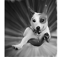 Dog Oil Painting Photographic Print