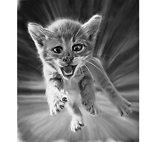 Cat Oil Painting Photographic Print