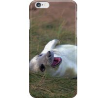The Donna Nook Grey Seal Colony iPhone Case/Skin
