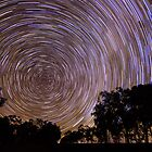 Startrails by Tim Swinson