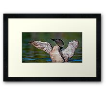 Another Impression Framed Print