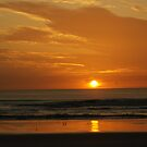 daytona sunrise by Kevin Koepke