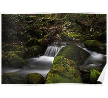 Little Fisher River Poster