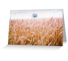 In the Fields of Evermore Greeting Card