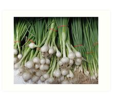 Bunches of Onions Art Print