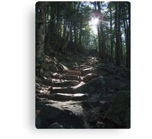 The way to King Mountain Canvas Print