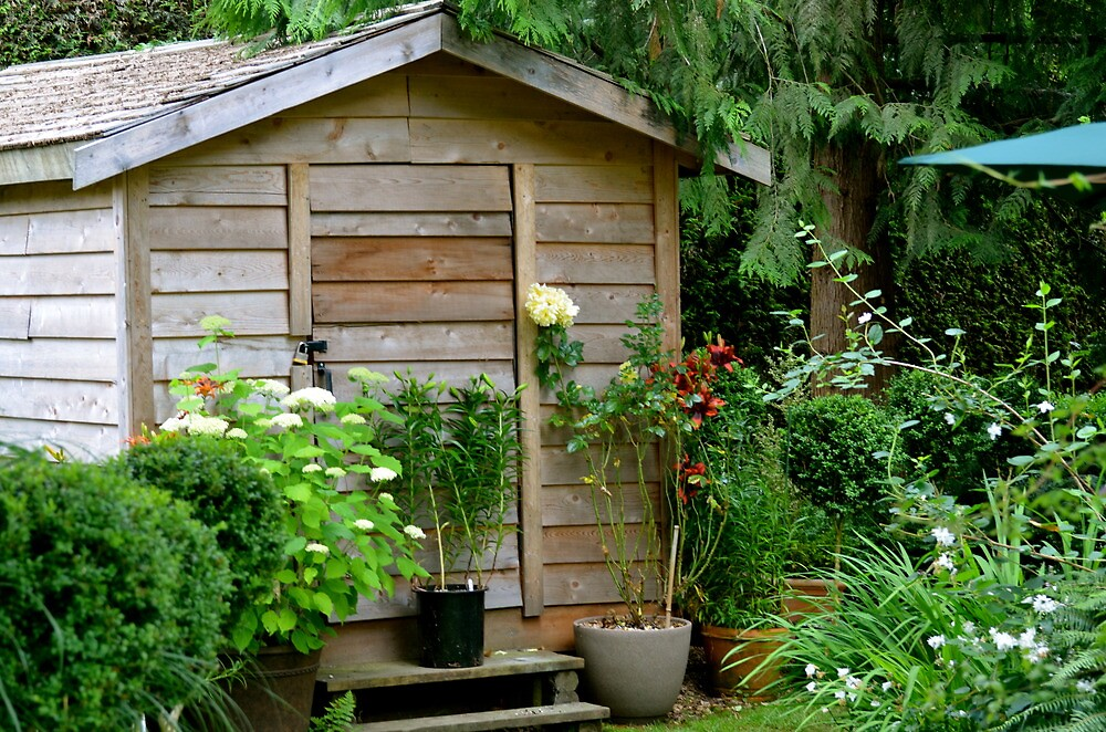 The Garden Shed by Carol Clifford