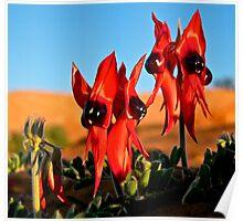 Sweet Peas of the Desert Poster
