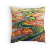 Channel Country 2 Throw Pillow