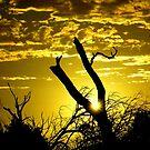 Sun going Down by photoj