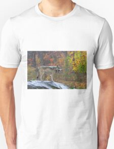 Timber Wolf in the rain T-Shirt