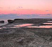 Pink Reflections by bazcelt