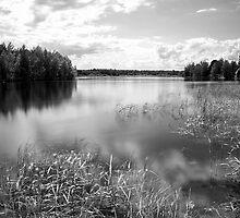 Lake by Tommi Rautio