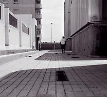 The Walkway by Tamara Rogers