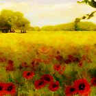 A Poppy meadow'... by Valerie Anne Kelly