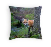 Red Fox - Algonquin Park, Canada Throw Pillow