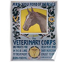 Are you fond of horses US Army The Veterinary Corps instructs you in their care and treatment riding and driving Poster