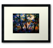 Stopping By The Woods...In Summer Framed Print