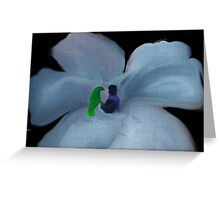 GOD AND HIS CREATIONS...FRIENDSHIP Greeting Card