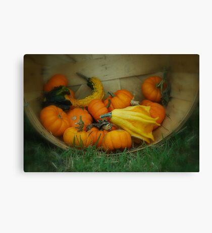Fall Vegetables  Canvas Print