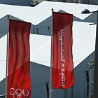 Olympic banners, London, 2012 by GregoryE