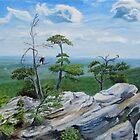 Eagle Overlook by P. Leslie Aldridge