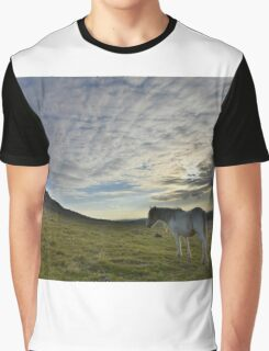 Cornwall: Lone Pony Graphic T-Shirt