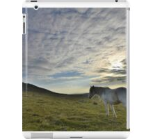 Cornwall: Lone Pony iPad Case/Skin