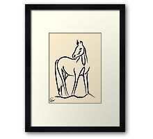 Horse - Grace Framed Print
