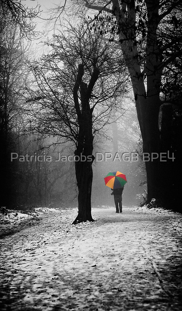 A Lonely Winters Walk by Patricia Jacobs CPAGB LRPS BPE4