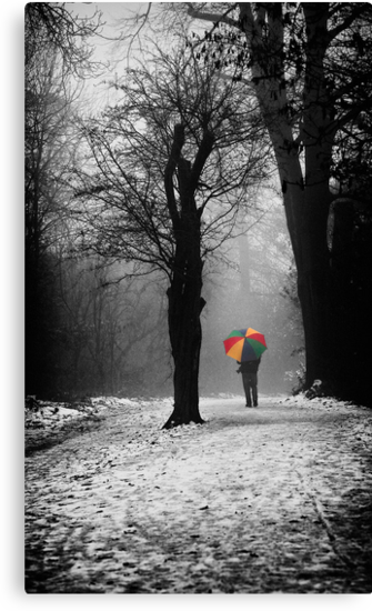 A Lonely Winters Walk by Patricia Jacobs CPAGB LRPS BPE3