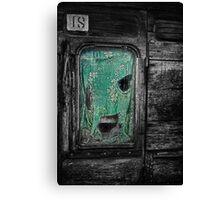 Curtain at the Window Canvas Print