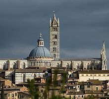 Majestic cathedral in center of Siena, Tuiscany, Italy by Alexander Sorokopud