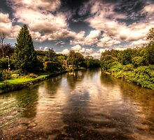The River Exe at Bickleigh by Rob Hawkins